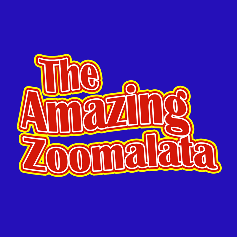 Zoomalata Magic & Balloons Appleton Wisconsin